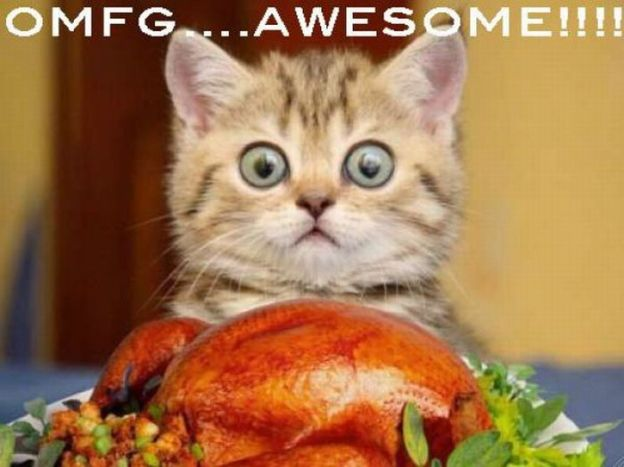 funny_thanksgiving_moments_07