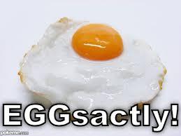 eggsactly