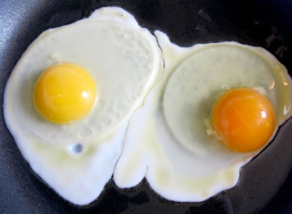 egg-yolk-colors-flickr.jpg